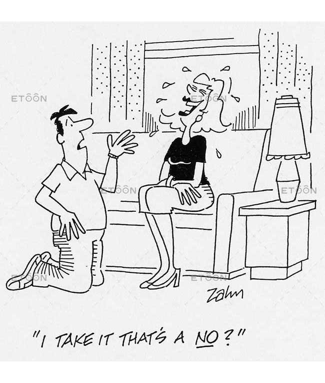 I take it thats a NO?: eToon cartoon for newsletters, presentations, websites, books and more