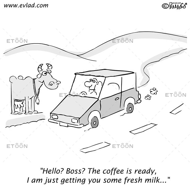 Man driving past a field and a cow...: eToon cartoon for newsletters, presentations, websites, books and more